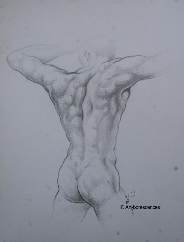 Des modèles masculins nus